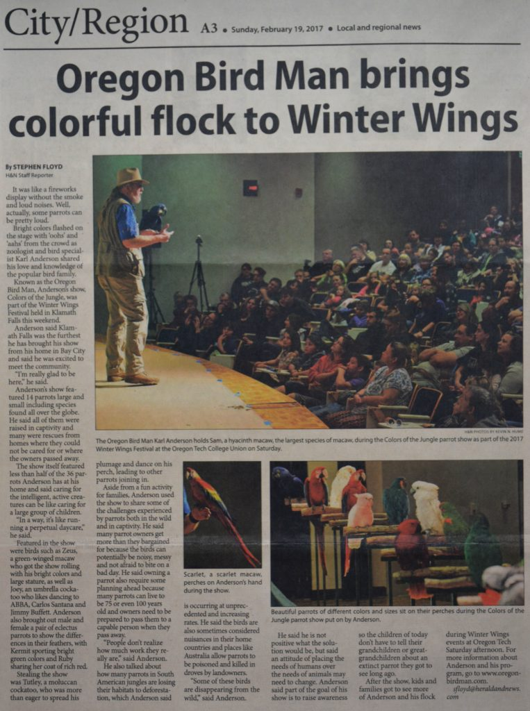 Winter Wings Article 2